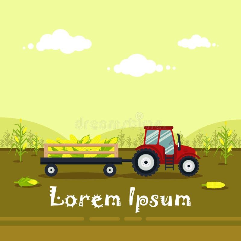 Tractor rojo plano con un maíz del carro Los transportes de la maquinaria agrícola para la granja con la cosecha - vector el ejem ilustración del vector