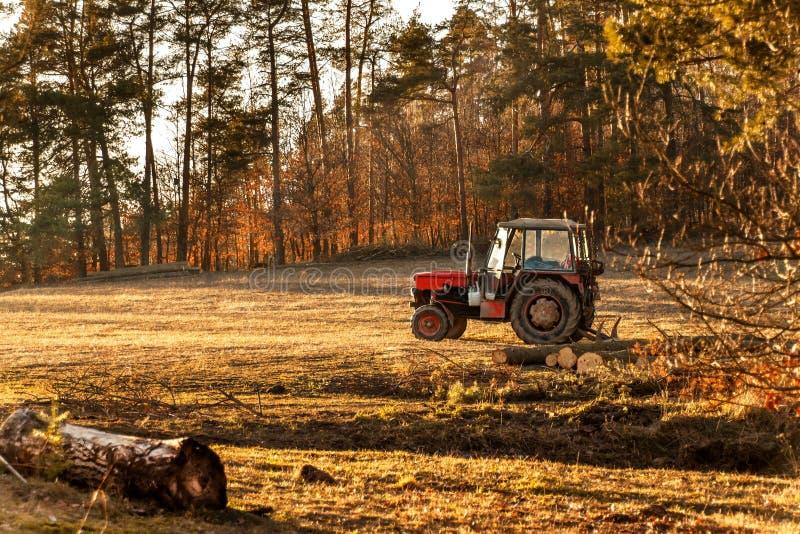 Tractor rojo viejo al borde de un trabajo del bosque en bosque un tractor abandonado Paisaje del campo checo imagen de archivo