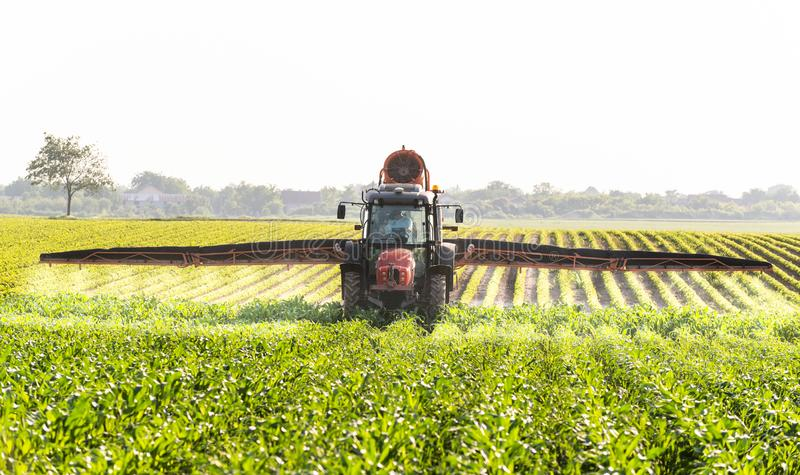 Tractor spraying corn field royalty free stock images