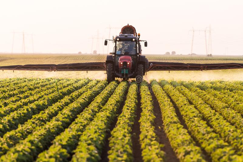 Tractor spraying pesticides on soybean field with sprayer at spring royalty free stock photography
