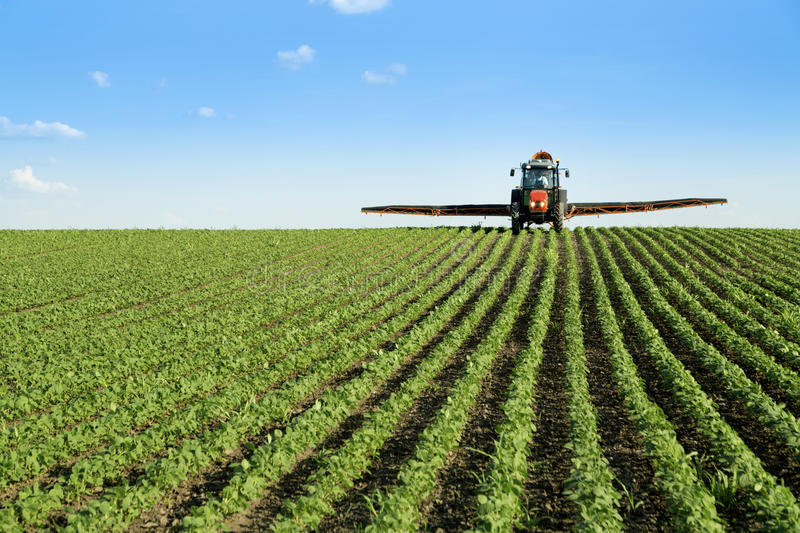 Tractor spraying soybean crop field stock images