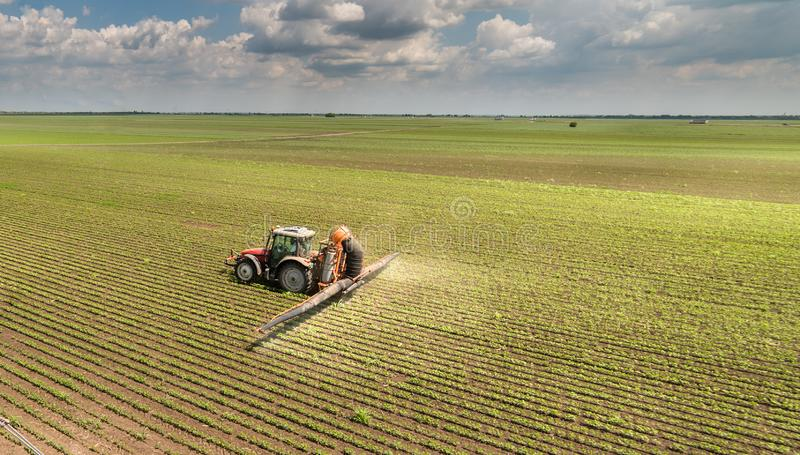 Tractor spraying soybean field royalty free stock photos