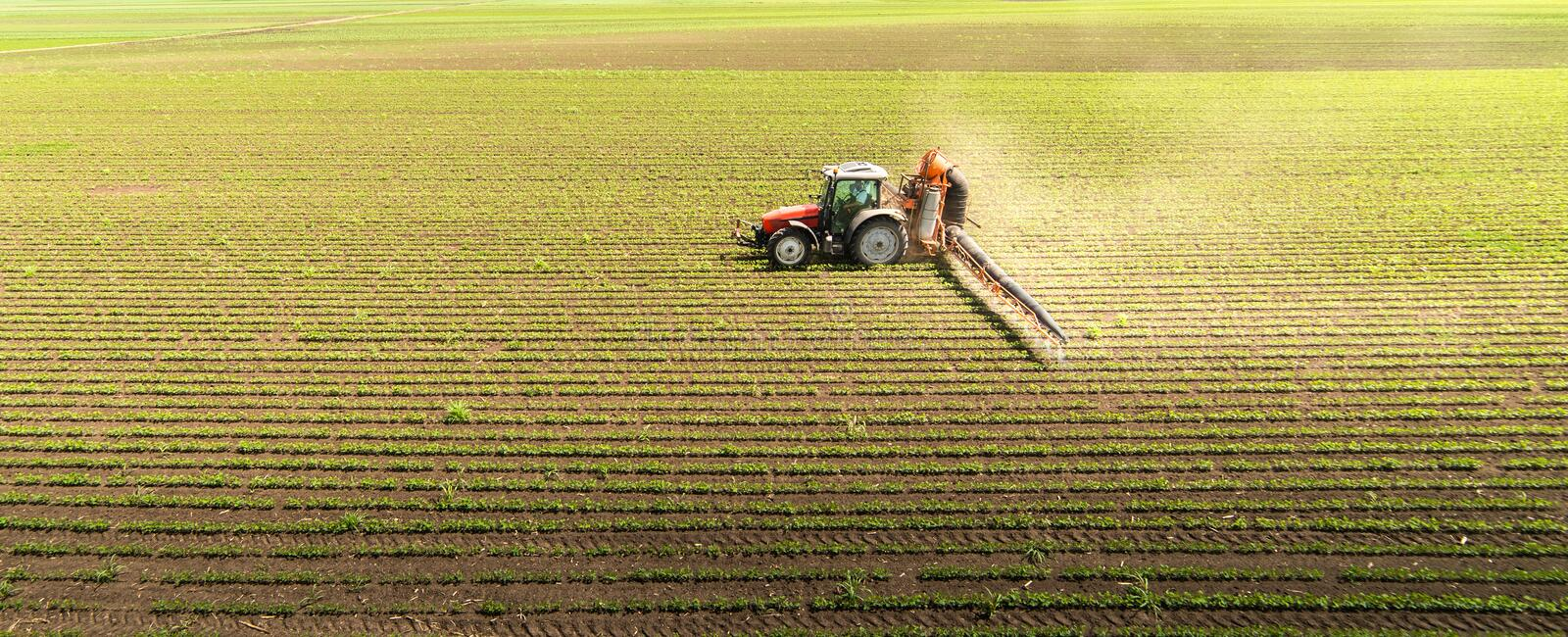 Tractor spraying soybean field royalty free stock images