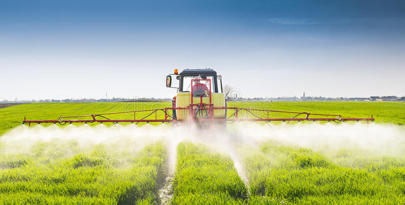 Tractor spraying wheat field stock photography