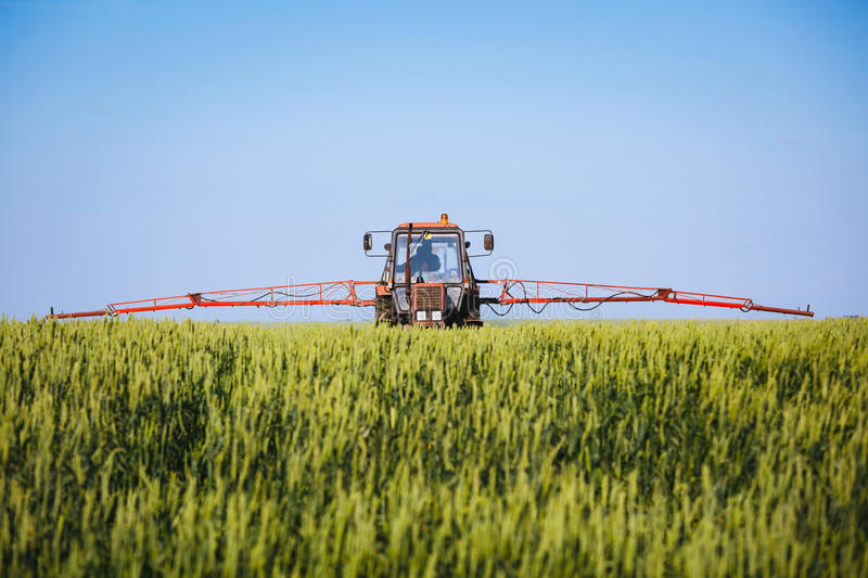 Tractor spraying wheat field with sprayer royalty free stock photography