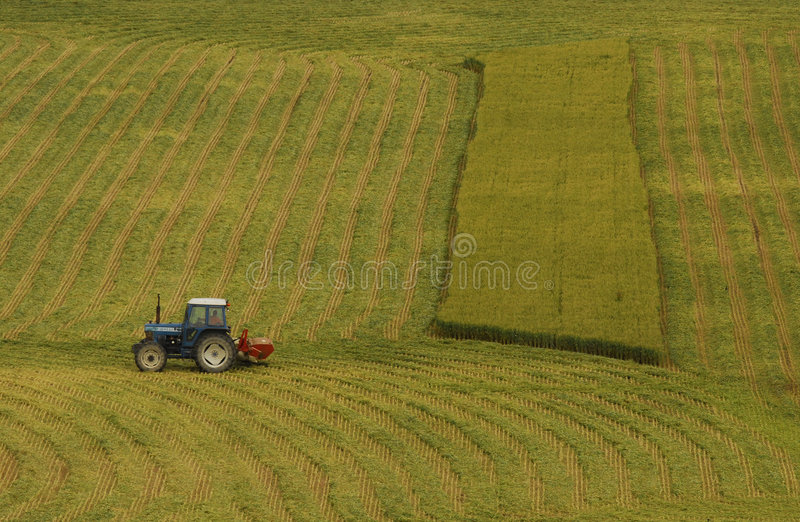 Download Tractor to work stock image. Image of canada, green, breads - 6239441