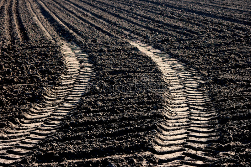 Download Tractor tracks stock image. Image of tractor, soil, farmed - 5128321