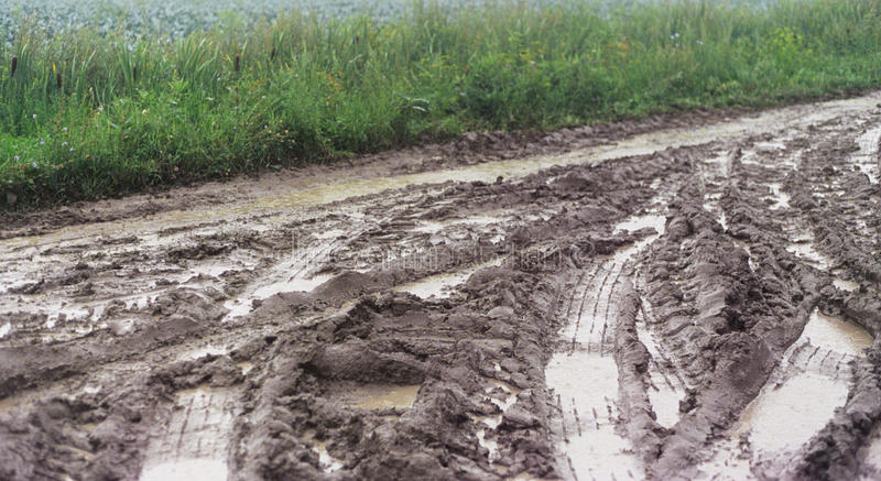 Tractor tracks in wet mud near a crop field stock images