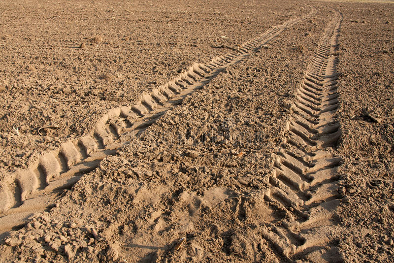 Download Tractor trail stock photo. Image of plow, till, plowed - 13641380