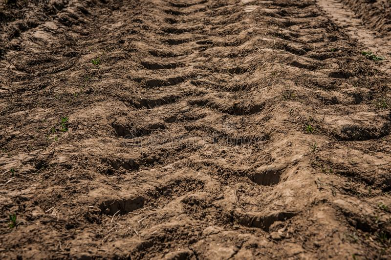 Tractor wheel tracks on the ground. In countryside royalty free stock photo
