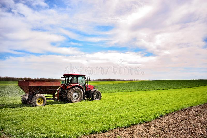 Tractor work on the field. Applying fertilizer in spring. Agriculture landscape. Tractor spreading mineral fertilizer in wheat field royalty free stock image