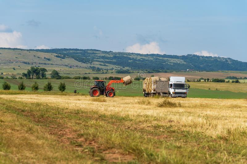 Tractor lifting hay bale on barrow. Tractor working with Hay Bale stock photos