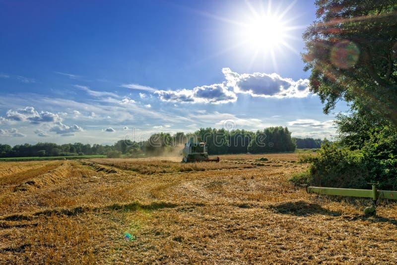 Download Tractores Y Cosecha - Vintage Foto de archivo - Imagen de agrícola, producto: 42445284
