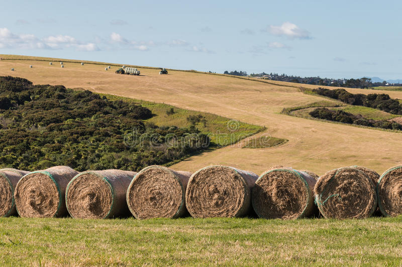 Tractors harvesting hay. Farmland with tractors harvesting hay stock images