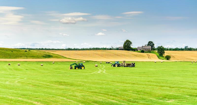 Tractors work in the meadow storing rolls with hay. Landscape with blue sky, yellow field and green meadow on which tractors operate stock photo