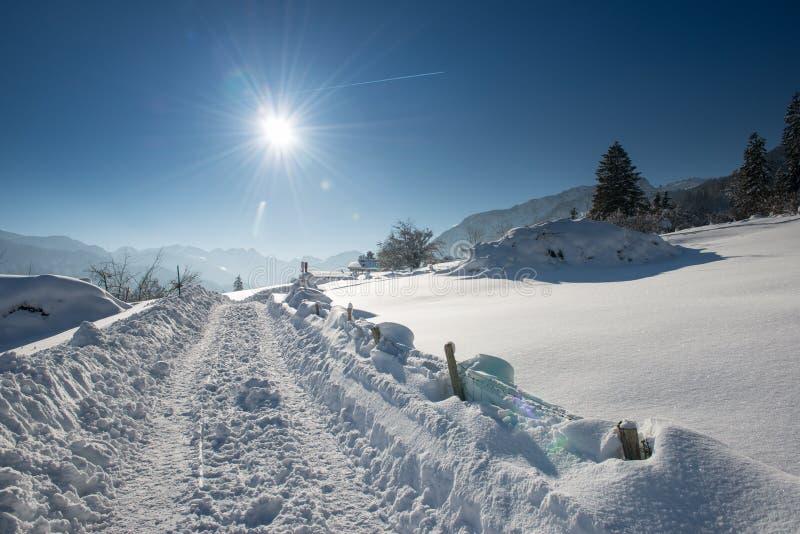Tractorsporen in sneeuwlandschap stock fotografie