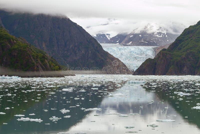 Tracy Arm Fjord och Sawyer Glacier, Alaska royaltyfri fotografi