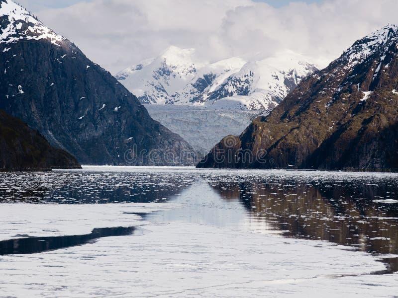 Tracy Arm Fjord och Sawyer Glacier, AlaskaTracy armfjord och Sawyer Glacier, Alaska royaltyfria bilder