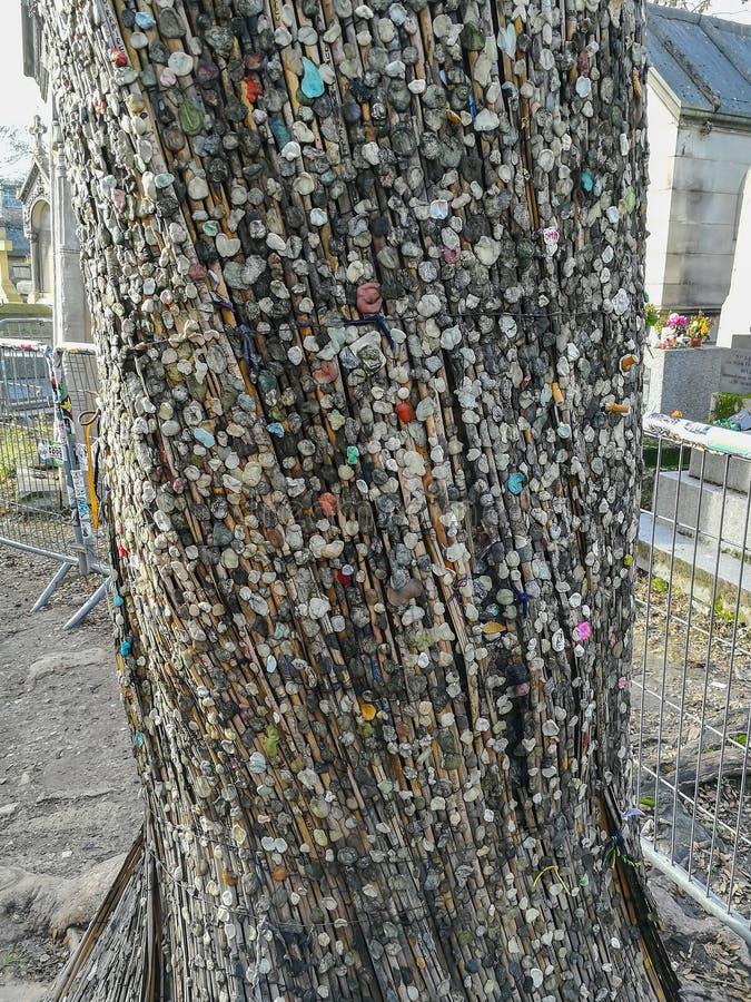 A tradição de pôr beatas da pastilha elástica e do cigarro sobre uma árvore perto da sepultura de Jim Morrison em Pere Lachaise C fotografia de stock