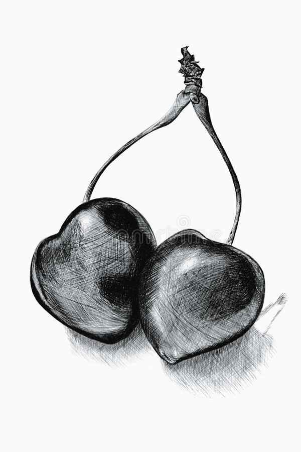 Tradional hand drawn black ballpoint pen illustration royalty free stock photo