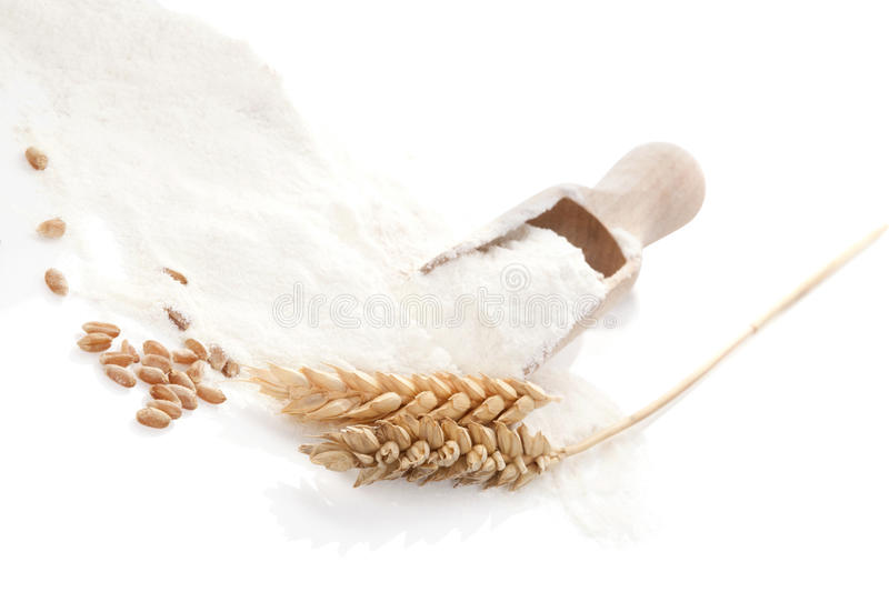 Traditional agriculture background. Rye, crop and flour on wooden scoop on white background stock photography