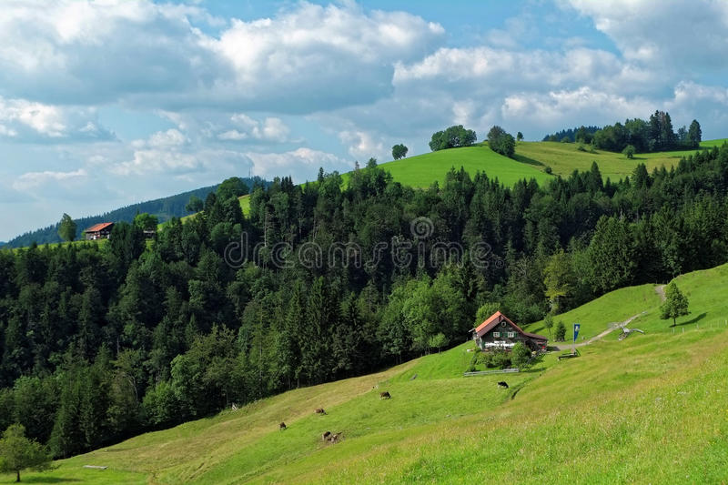 Traditional Alp in pre-alpine landscape. Hike and stop at a Alp in the pre-alpine region of Allgau at Oberstaufen, Germany. Summer holiday idyll stock photography