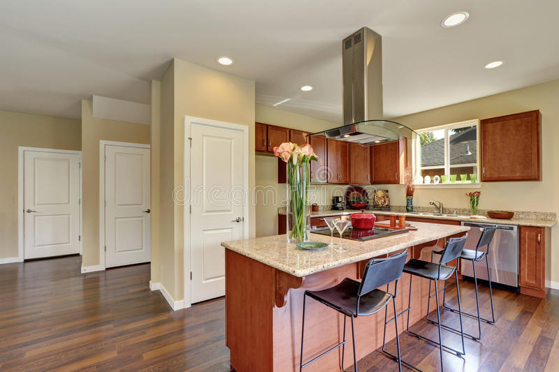Traditional American kitchen featuring stainless steel appliances. Traditional American kitchen featuring stainless steel appliances, range hood, an island and royalty free stock image