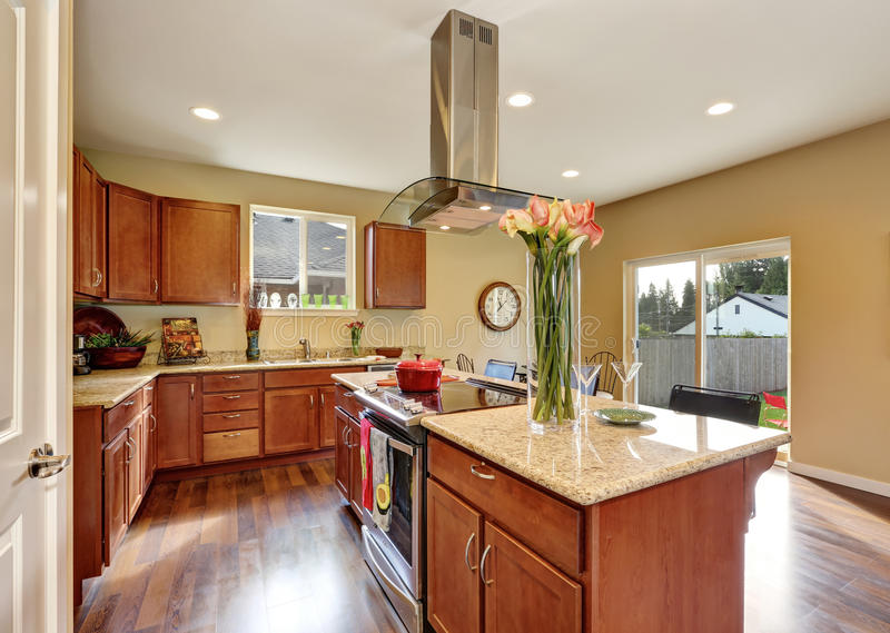 Traditional American kitchen featuring stainless steel appliances. Traditional American kitchen featuring stainless steel appliances, range hood, an island and royalty free stock photos