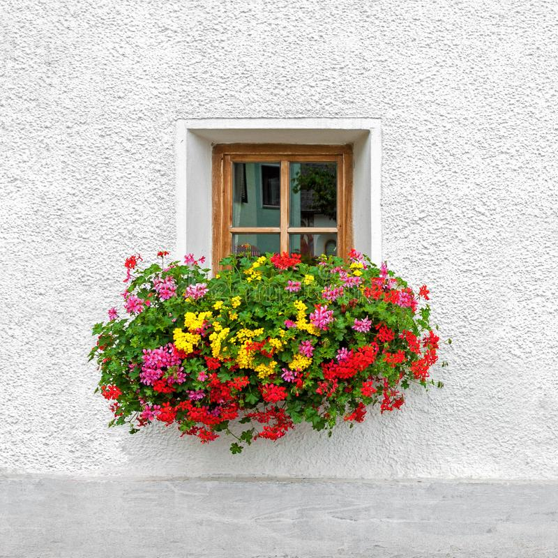 Free Traditional Austrian Window With Blooming Summer Flowers Stock Images - 115704034