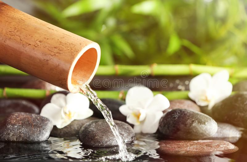 Traditional bamboo fountain with spa stones and flowers, closeup stock image