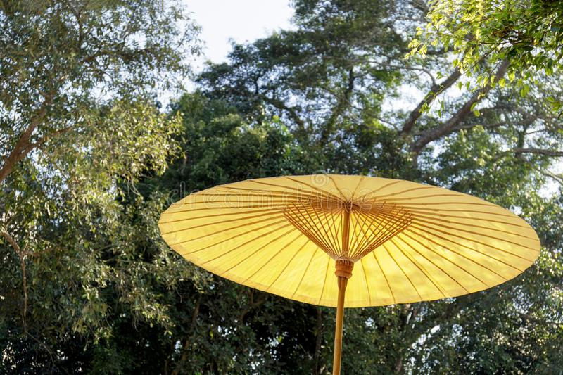 Traditional bamboo umbrella on nature green background stock photography