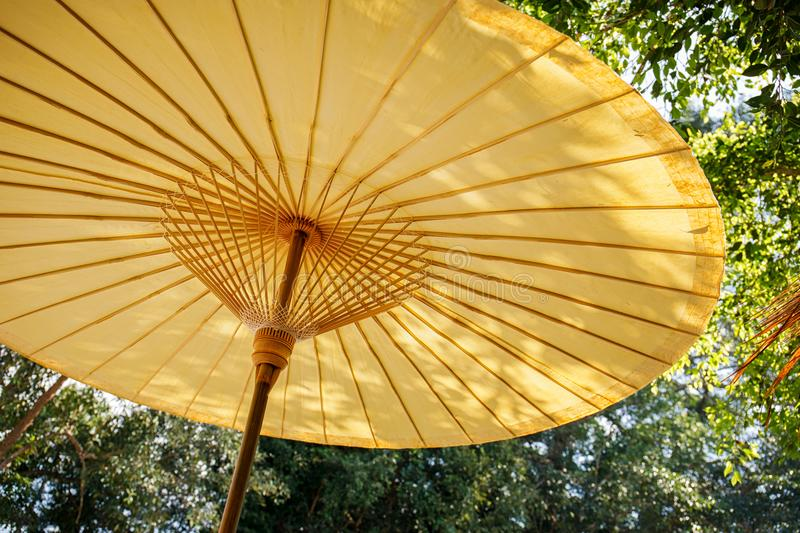 Traditional bamboo umbrella on nature green background stock image