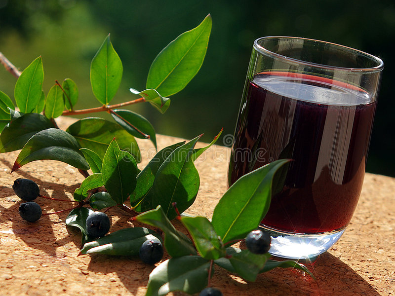 Traditional berry's Liqueur of Sardinia royalty free stock image