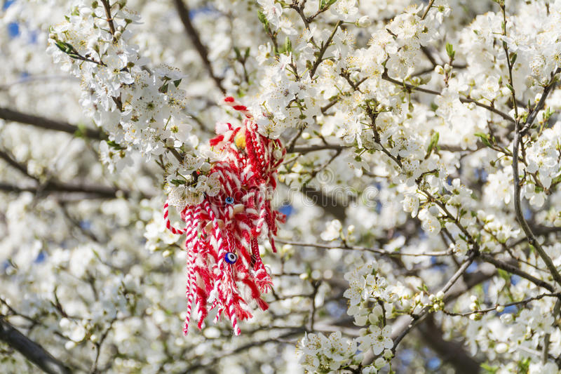 Traditional bulgarian martenitsa on a blooming spring tree royalty free stock photos