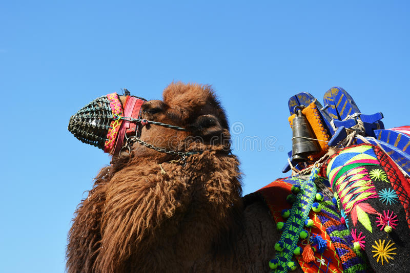 Traditional carnival attractions. royalty free stock photos