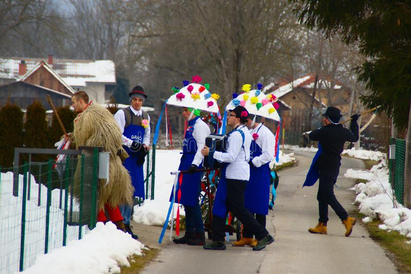 Carnival Ploughing, Slovenia. Traditional carnival custom of ploughing in villages around Ptuj, Slovenia: men dressed in traditional costumes as kurenti royalty free stock photography