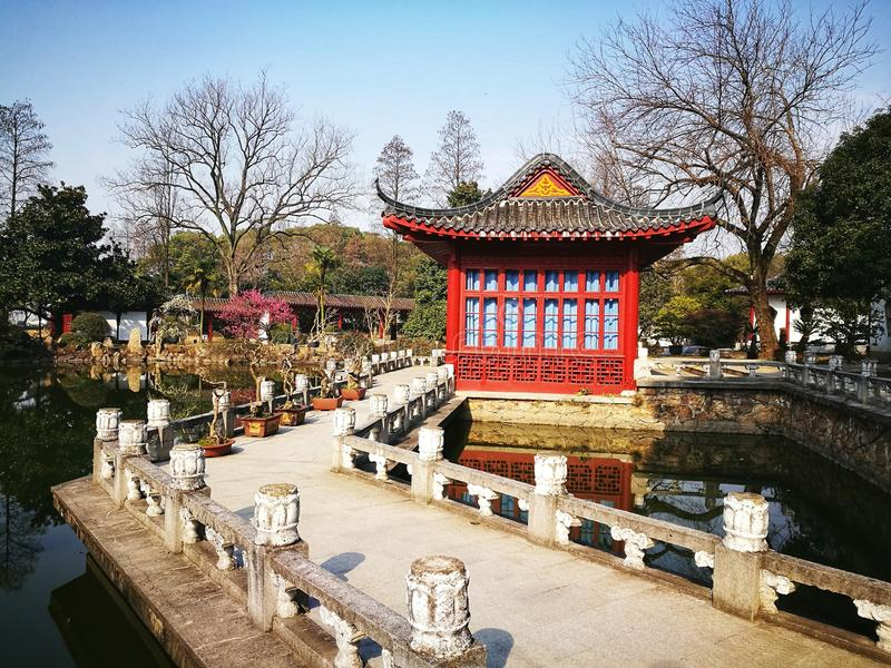 Traditional Chinese garden under blue sky. Traditional Chinese garden with Pavillion,stone bridge and trees royalty free stock photography