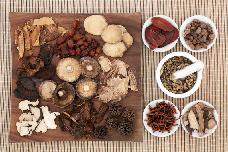 Traditional Chinese Herbal Medicine. Traditional chinese herb selection used in herbal medicine on maple wood board and in porcelain bowls with mortar and pestle royalty free stock images