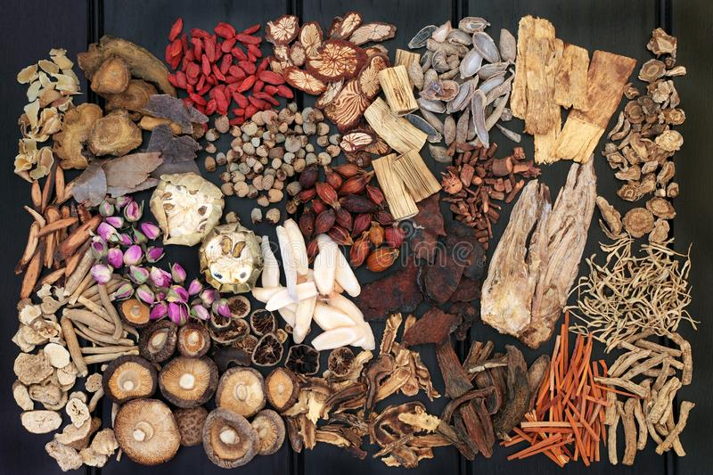 Traditional Chinese Herbs stock images