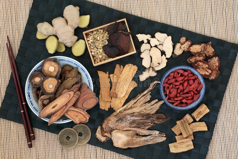 Traditional Chinese Herbs. Used in alternative herbal medicine with feng shui coins. Top view on bamboo background stock photography
