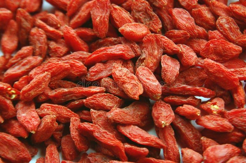 Traditional Chinese Medicine. Chinese herbs medlar stock photo
