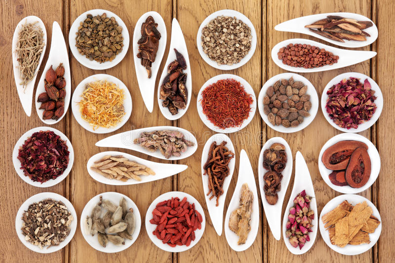 Traditional Chinese Medicine. Large chinese herbal medicine selection in white porcelain dishes over oak background stock image