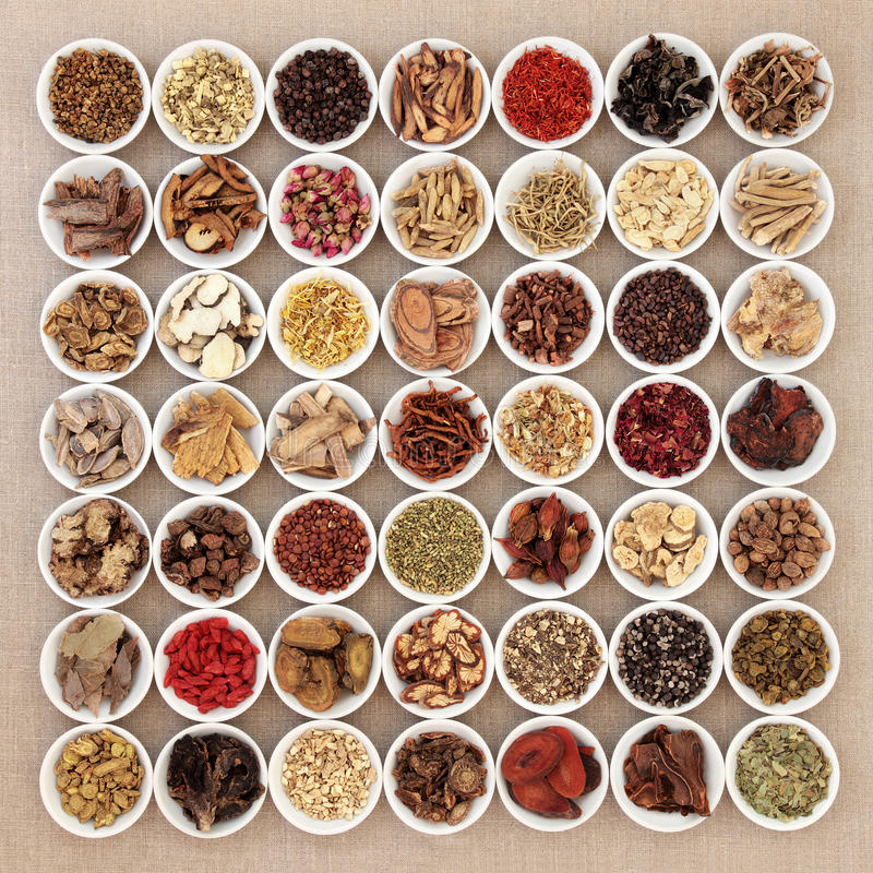 Traditional Chinese Medicine Selection. Traditional chinese herbal medicine ingredients in white china bowls over hessian background stock image