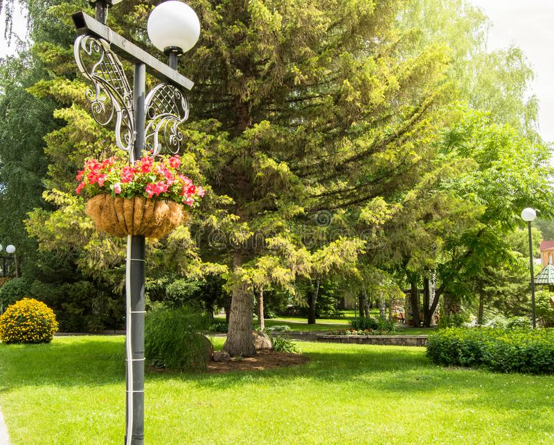 Traditional city lantern with decorative hanging basket with beautiful flowers in the Park on a background of green stock photo