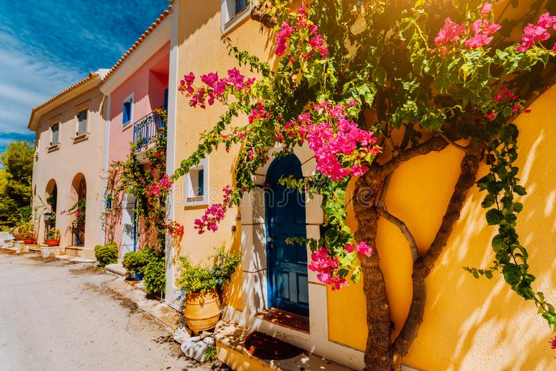 Traditional colorful greek houses in Assos village. Blooming fuchsia plant flowers growing around door. Warm sunlight. Kefalonia. Island, Greece royalty free stock photo