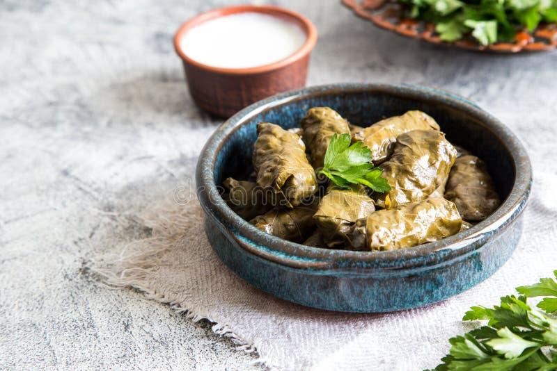 Traditional dolma  sarma in grape leaves with copyspace. Lebanon turkish greek middle eastern cuisine. Dinner food dolmadakia.  stock photo
