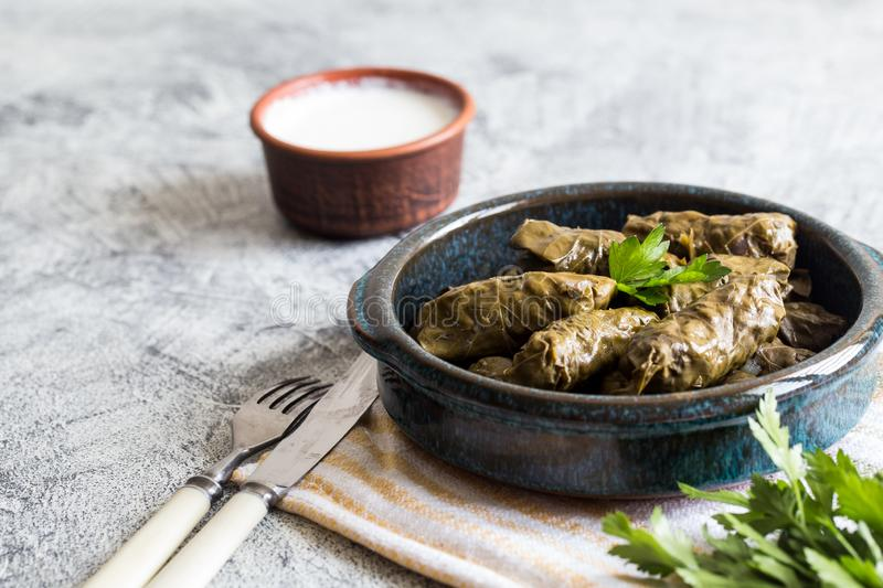 Traditional dolma  sarma in grape leaves with copyspace. Lebanon turkish greek middle eastern cuisine. Dinner food dolmadakia. Traditional dolma sarma in grape stock image