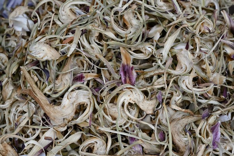 Traditional dried herbs for tea - asian medicine and healthcare royalty free stock photography