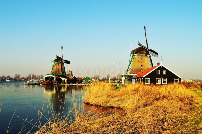 Traditional Dutch landscape with windmills royalty free stock images