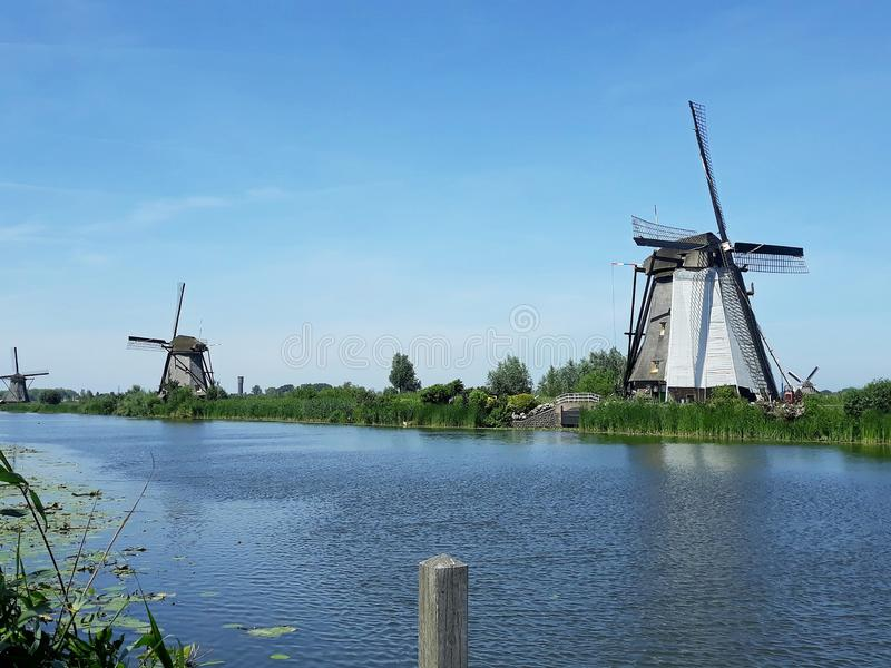 Traditional Dutch windmills at Kinderdijk, Holland. Beautiful landscape with green grass and traditional Dutch windmills on the shore of a river in Kinderdijk royalty free stock image